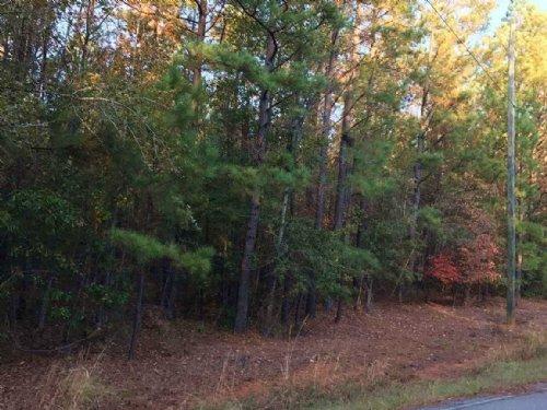 Land Awaiting Your Dream Home : Eatonton : Putnam County : Georgia