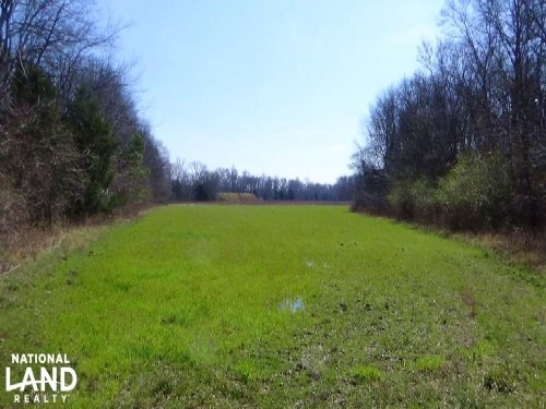 Freetown Creek Timber & Hunting Inv : Uniontown : Perry County : Alabama