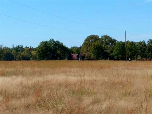 196.80 Acres / 30487 : Paris : Lamar County : Texas