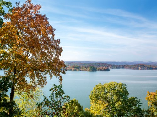 200± Acres On Watts Bar Lake : Ten Mile : Meigs County : Tennessee