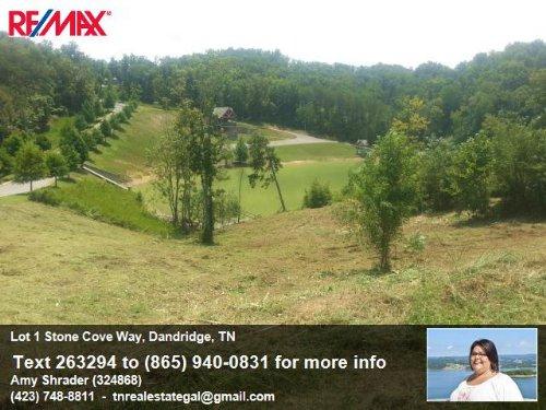 Lake Front Lot On Douglas : Dandridge : Jefferson County : Tennessee
