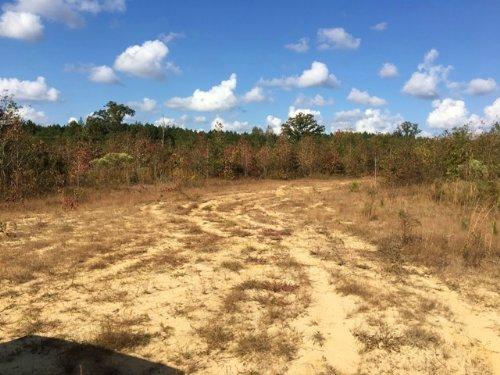 10 Acres For Sale : Starkville : Oktibbeha County : Mississippi