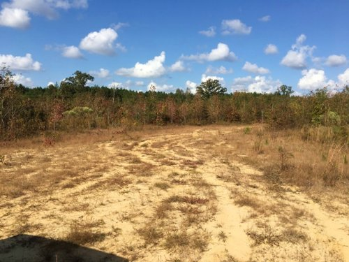 55.6 Acres Great For Development : Starkville : Oktibbeha County : Mississippi