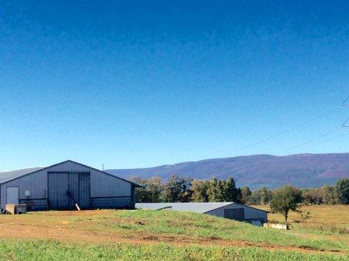 34+/- Acre Poultry & Cattle Farm : Havana : Yell County : Arkansas