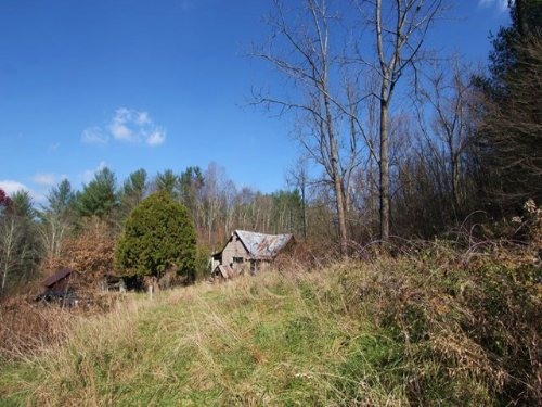 Hidden Gem Of A Small Acreage Tract : Elk Creek : Grayson County : Virginia