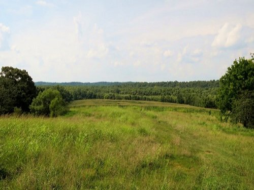 471 Acres Near Lake Barkley, Ky. : Cadiz : Trigg County : Kentucky
