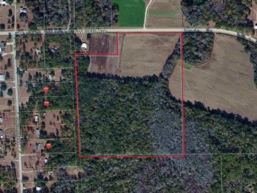 35.99 Acres In Woods And Pasture : Gainesville : Alachua County : Florida