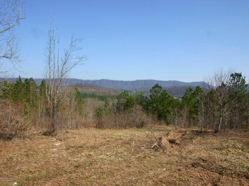 Hilltop Properties : La Fayette : Walker County : Georgia