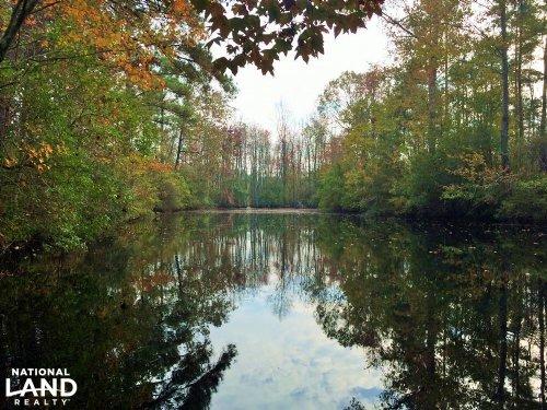 Camden Farm And Hunting Land : Camden : Kershaw County : South Carolina