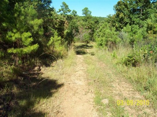 5 Acre Pine Mountain Ranch : Wilburton : Latimer County : Oklahoma