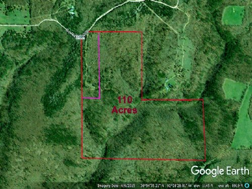 Lease Only 110 Acres Great Hunting : Ava : Douglas County : Missouri