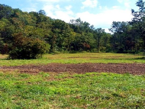 38 Acres With Large Clearing : Jadwin : Dent County : Missouri