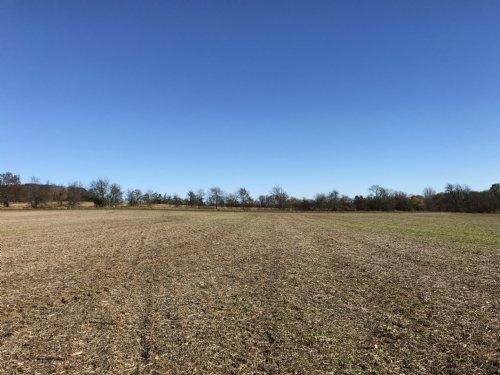 60 Acre Parcel In Berlin Buildable : Berlin : Green Lake County : Wisconsin