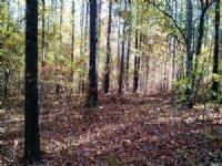 Anchor Pointe Drive - Lot 69 : Eatonton : Putnam County : Georgia