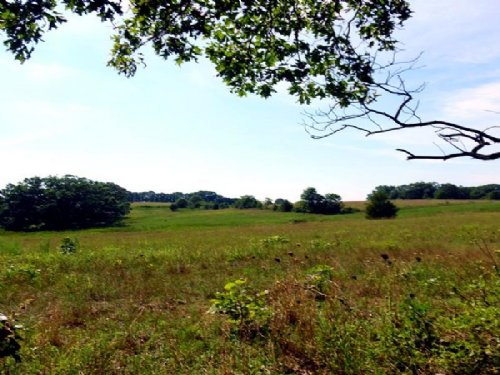 3.7 Acre With Views And Electric : Willow Springs : Howell County : Missouri