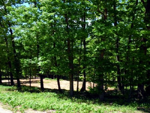 1 Acre Building Site With Utilities : West Plains : Howell County : Missouri