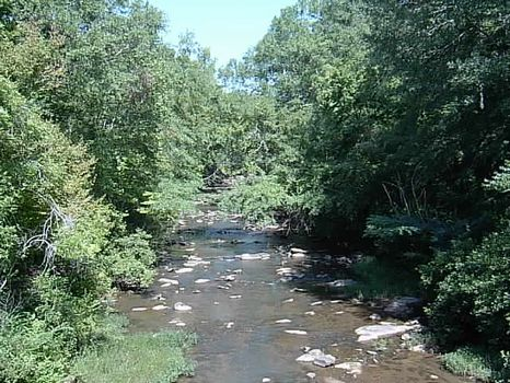 Beautiful Wooded Acreage on Creek : Ashland : Clay County : Alabama
