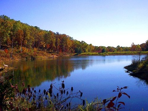 60 Acre Property With A Lake : Piedmont : Wayne County : Missouri
