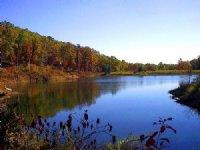60 Acre Property With A Lake : Piedmont : Wayne County : Missouri