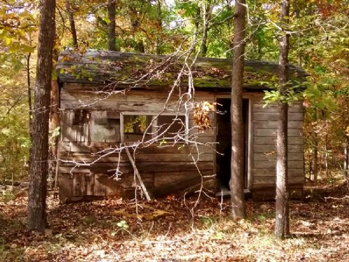 Hermit Cabin In The Woods- Electric : Ozark Acres : Sharp County : Arkansas