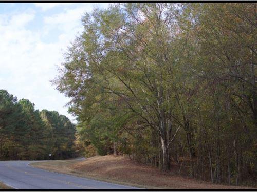 30 Acres In Attala County : Kosciusko : Attala County : Mississippi