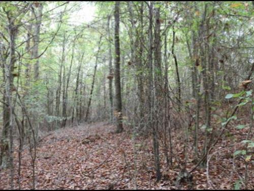 14 Acres In Neshoba County : Philadelphia : Neshoba County : Mississippi