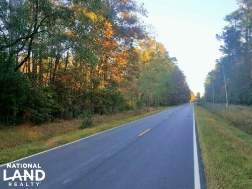 Pender County Residential Lot : Currie : Pender County : North Carolina