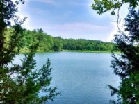 Secluded Land Near Lake : Highland : Sharp County : Arkansas