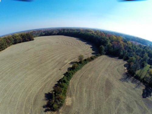 75+/- Ac. Farm On Cliffside Highway : Gaffney : Cherokee County : South Carolina