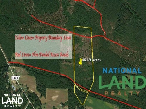 Pender County Hunting Land : Currie : Pender County : North Carolina