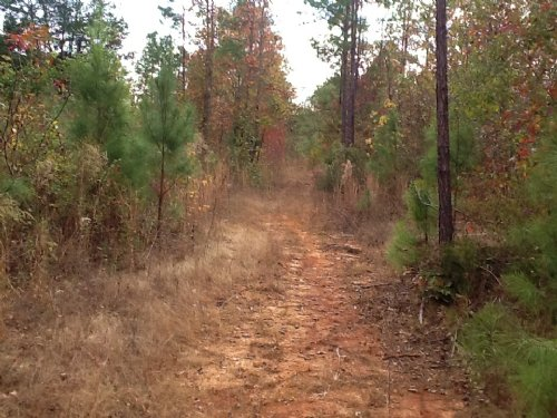 Manningham Rd Tract : Greenville : Butler County : Alabama