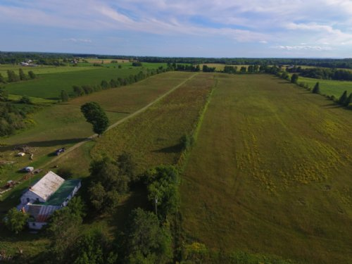 Crop Organic Berry Ranch 116 Acre : Shawville : Canada