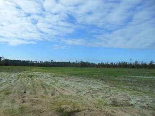 174 Acres Recreational Property : Jennings : Hamilton County : Florida