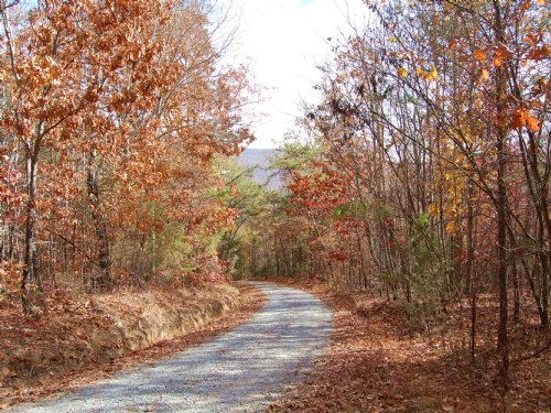 39 Acres Of Recreational Land : Dunlap : Bledsoe County : Tennessee