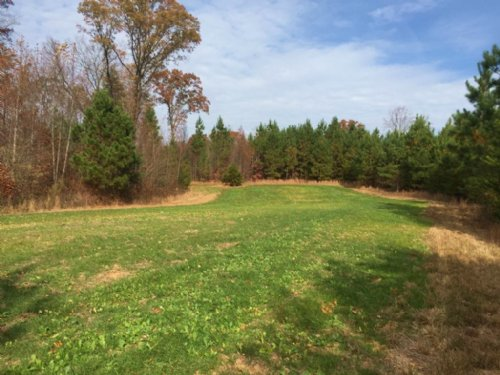 Joel King Tract : Yanceyville : Caswell County : North Carolina