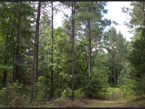 360 Acres In Attala County : Kosciusko : Attala County : Mississippi
