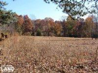 Harmony Crop & Farm Land : Harmony : Iredell County : North Carolina