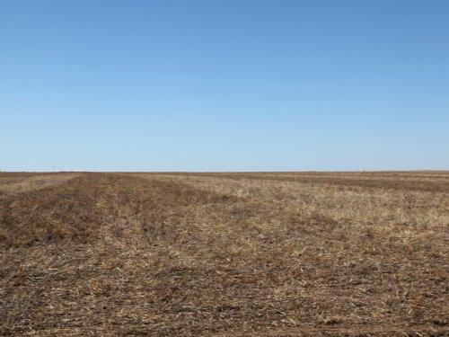 Dryland Property : Otis : Washington County : Colorado