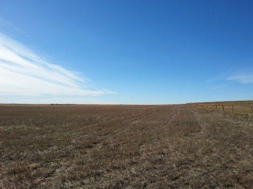 Boyle Dryland Farm Parcel #1 & #2 : Kimball : Nebraska