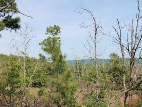 9.84 Acres Indian Ridge Ii : Daisy : Pittsburg County : Oklahoma