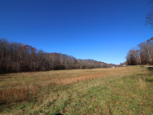 Jones Rd - 72 Acres : Shade : Meigs County : Ohio