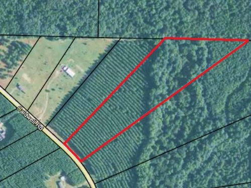 Lot 5 Great Location - 10+ Acres : Gay : Meriwether County : Georgia