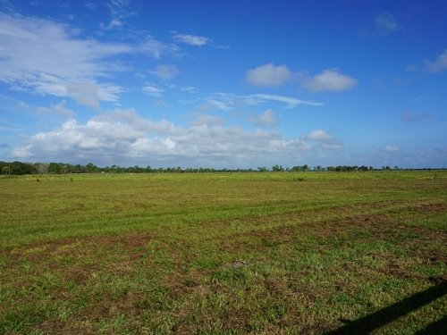 Circle G Ranch 298 Acres : Okeechobee : Florida