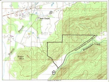 170 Acres of Timber & Hunting Land : Talladega : Talladega County : Alabama
