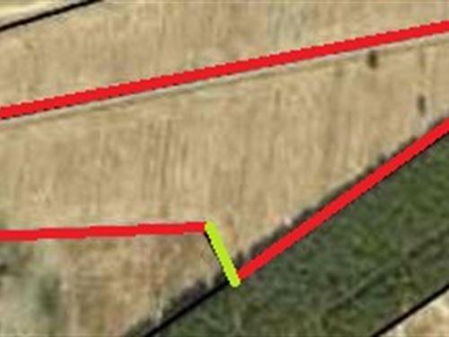 Lot 4 Convenient Location : Montrose : Bleckley County : Georgia