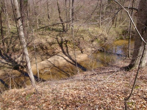 Walk To State Park : Rice : Prince Edward County : Virginia