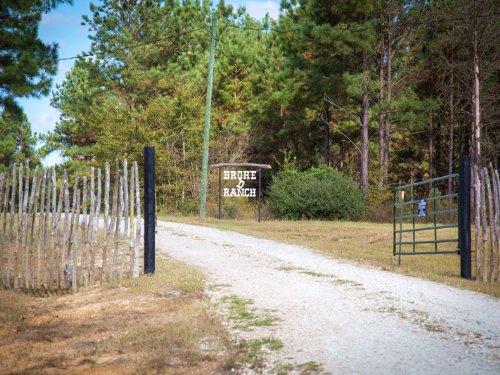 262 Acres Fm 3179 : Huntsville : Walker County : Texas
