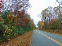 Historical Big Timber Great Area : Eatonton : Putnam County : Georgia