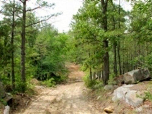 5.43 Acre Trophy Ridge Iii : Clayton : Pushmataha County : Oklahoma
