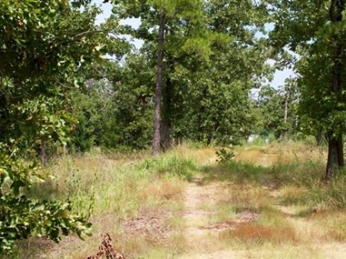 6.53 Acre Lake View Private Reserve : Clayton : Pushmataha County : Oklahoma